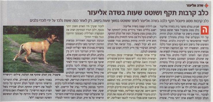כתבה במקומון על עורך דין אוהד שמואלי: כלב קרבות תקף ושוטט שעות בשדה אליעזר